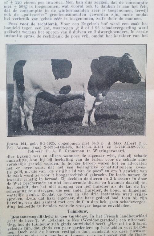 Veldbode_26mei1928_poesvoorderechtbank